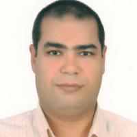 Mahmoud Rezk Ali AbouLaila